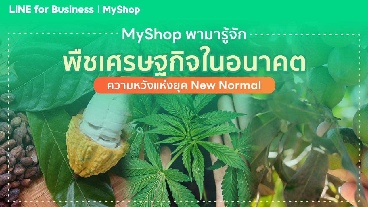 MyShop พามารู้จักพืชเศรษฐกิจในอนาคต ความหวังแห่งยุค New Normal